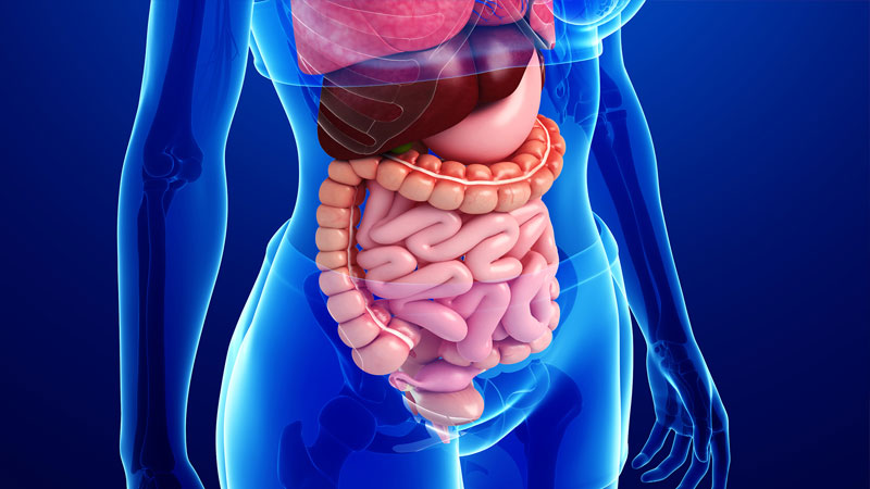 Gastroenterólogo en Toluca